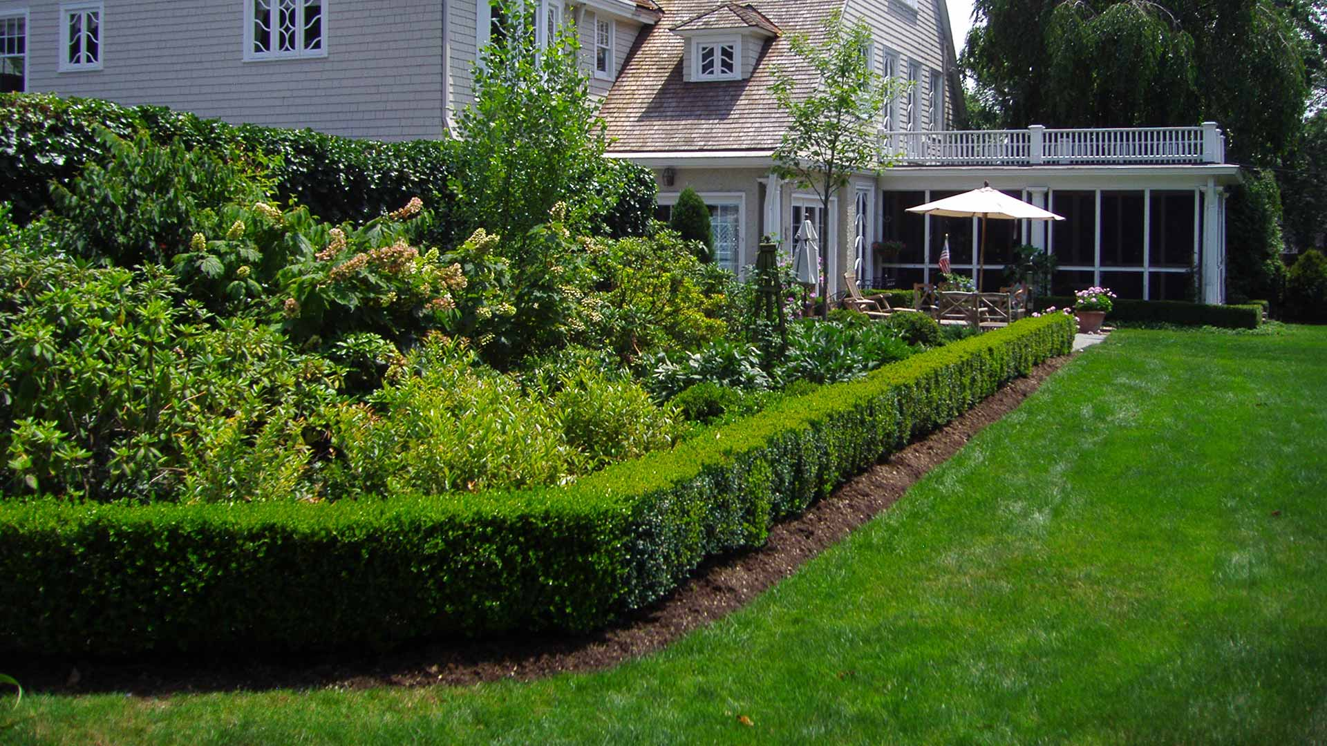 Healthy home lawn and maintained landscaping in Springfield Township, NJ.