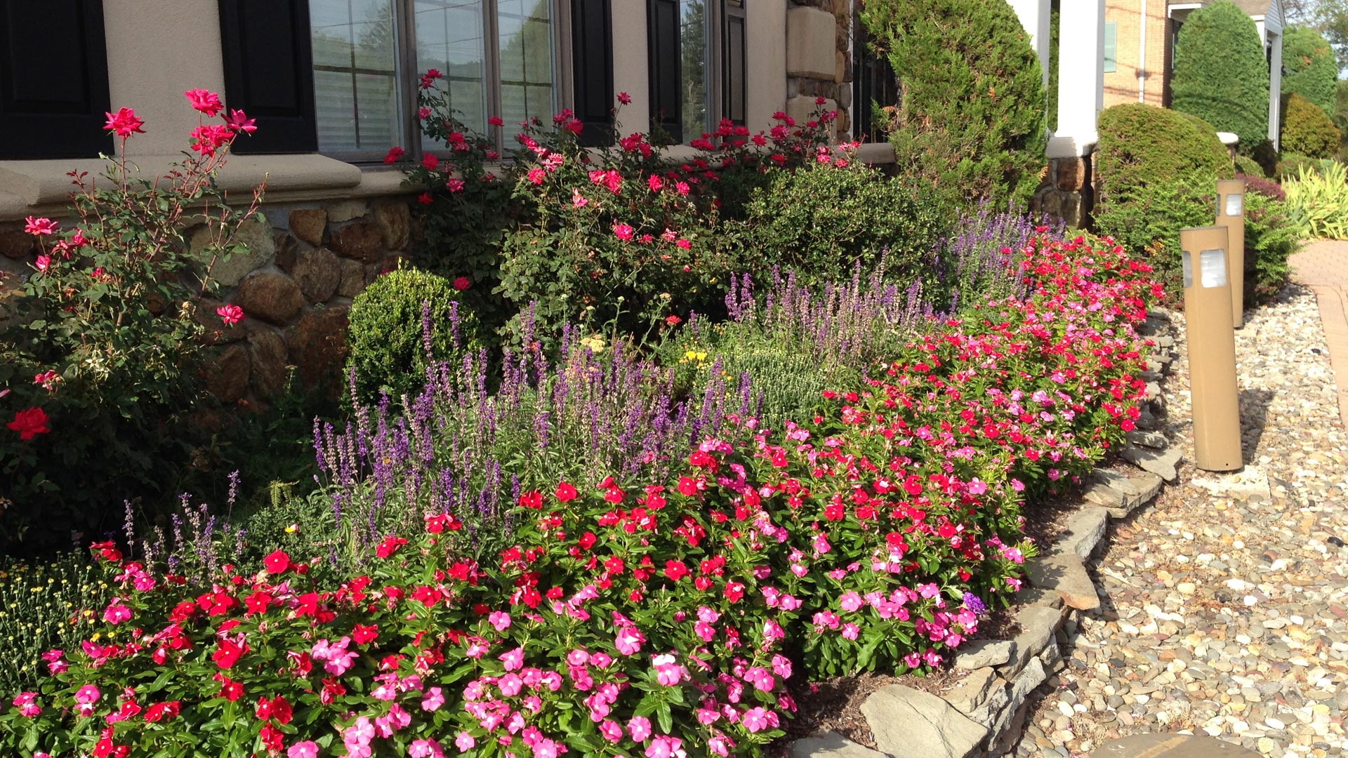 Beautiful annuals planted at a commercial property in Warren, NJ.