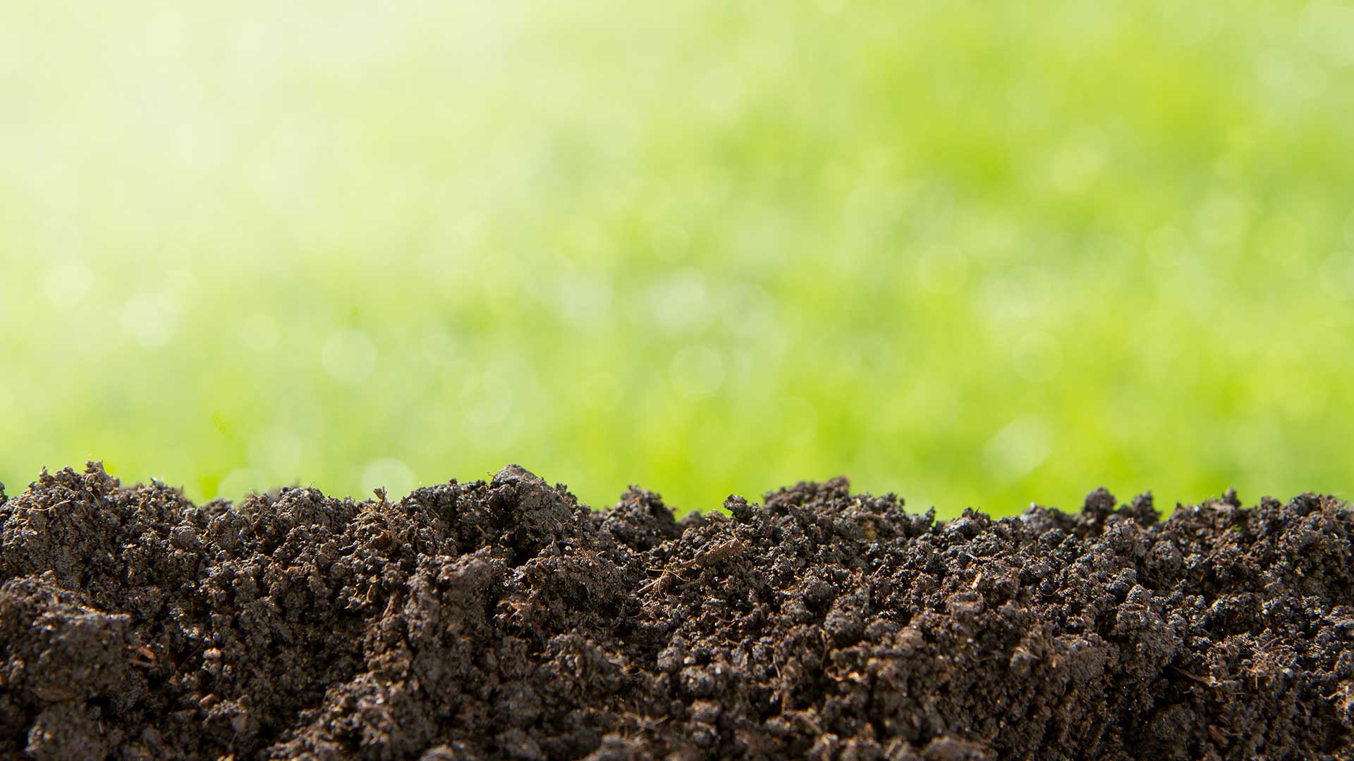 Topdressing for your lawn increases the health of your grass and soil in Warren, NJ.