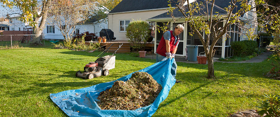 Yard cleanup services being performed for a yard in Watchung, NJ.