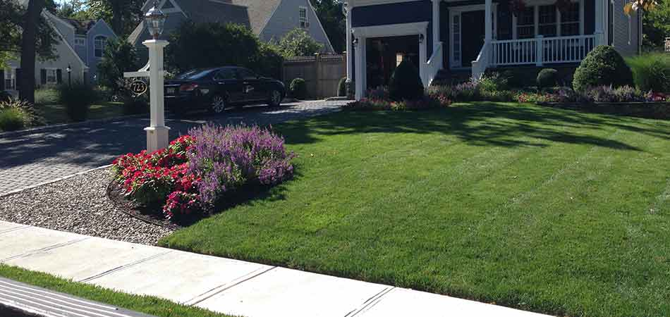 Westfield weed-free front lawn after weed control treatments from Stream Line Lawn & Landscape.