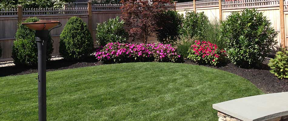 Landscape design and installation with local plants near Springfield Township, NJ.