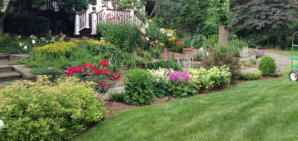 Property owners in Watchung need to carefully consider what plants they install in their landscaping.