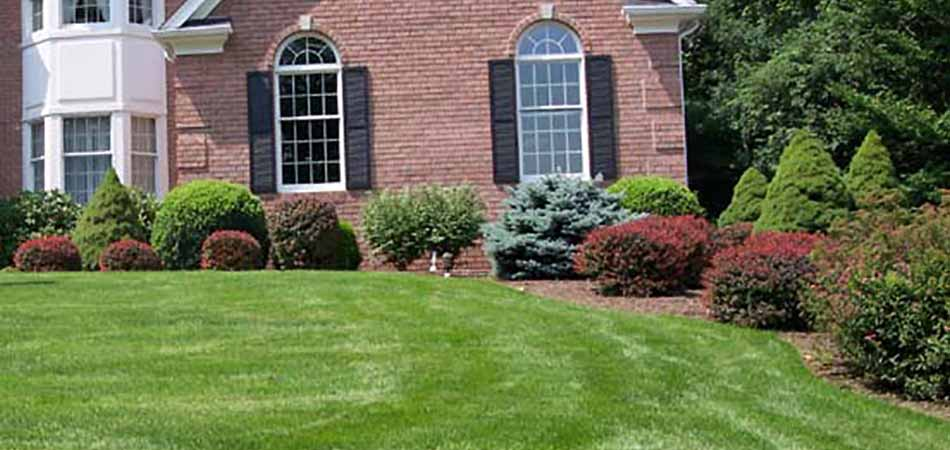 Homeowners in Watchung take the advice of keeping their lawns mowed, in order to avoid tick infestations.