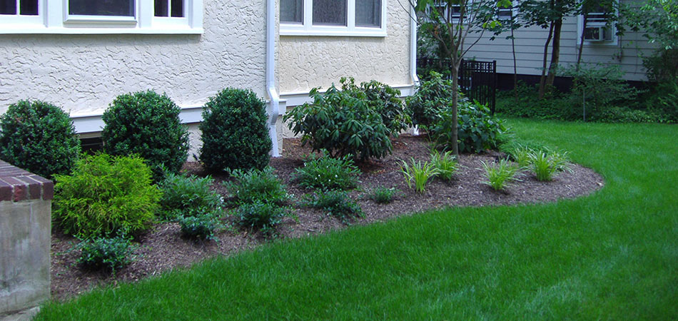 Thick lawn mulch and plant bed at Scotch Plains, NJ home.