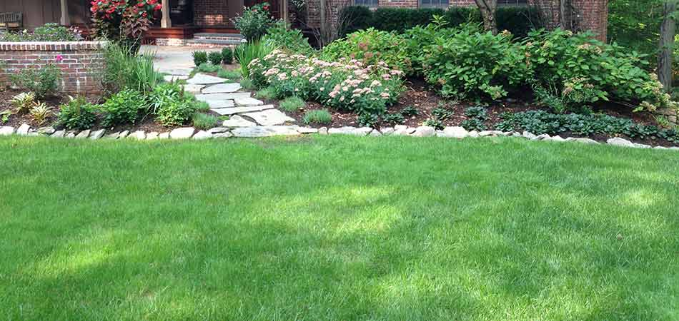 Aerated home lawn at a Scotch Plains, NJ residential property.