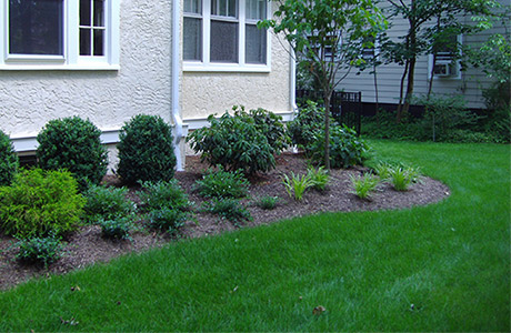 Landscaping and green grass at home in Warren, NJ.